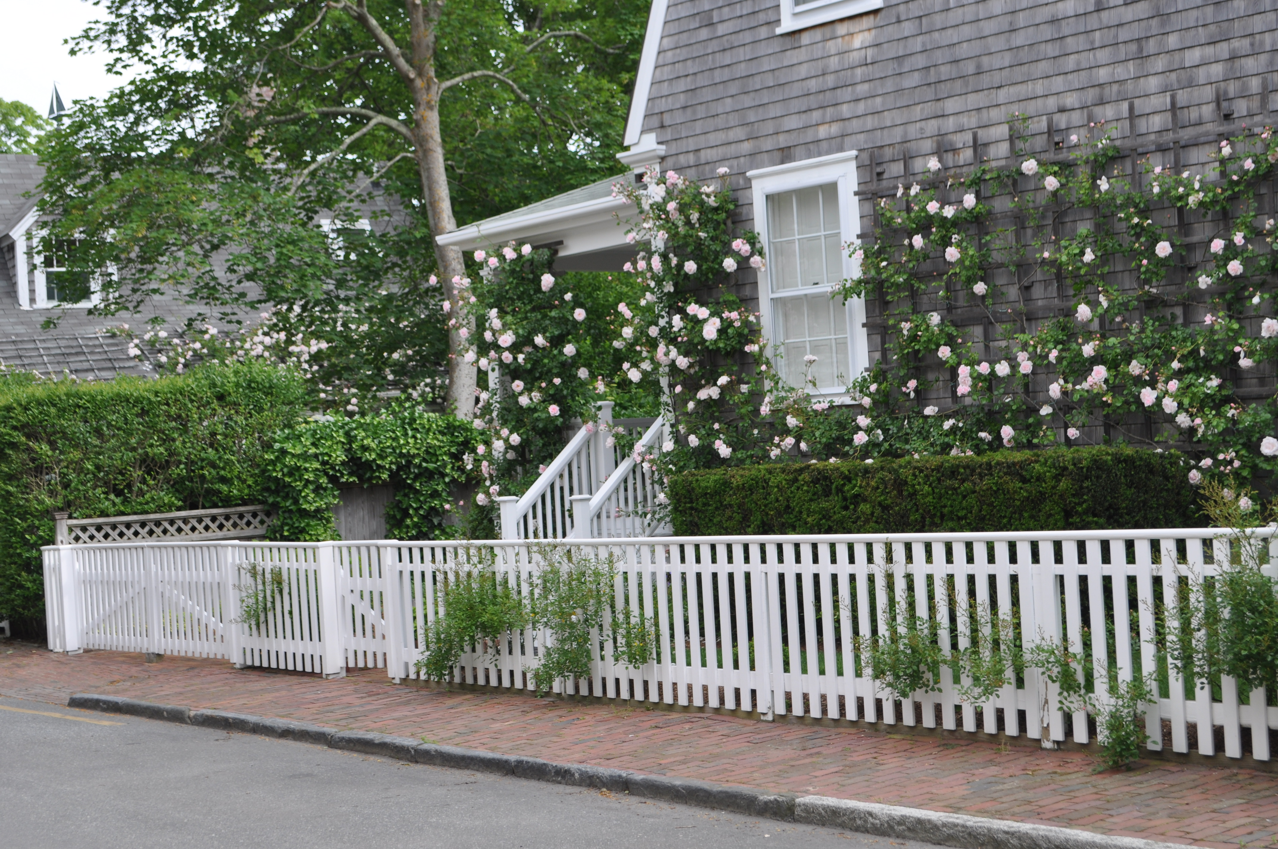 surrounded home garden tasha s the her gardens cottages cottage by search tudor for nantucket pin